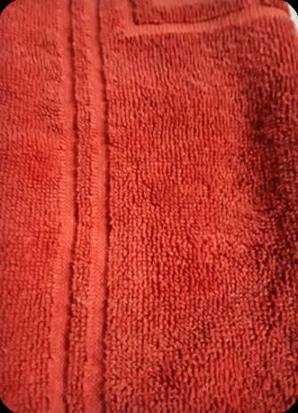 terry close up 2